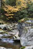 Adirondack Mountain Brook with Boulder Stock Images