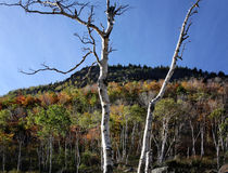 Adirondack Mountains Royalty Free Stock Images