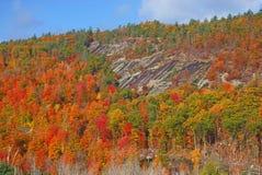 Adirondack nedgånglövverk, höst, New York Royaltyfri Fotografi
