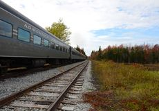 ADK Scenic Railroad fall foliage adventure. Adirondack Scenic Railroad. NYS. Center of image is vanishing point with train, tracks, and fall foliage. Wilderness royalty free stock image