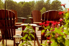 Adirondack stolar i sommaren royaltyfri foto