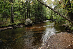 Adirondack stream Stock Photos