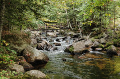 Adirondack stream Royalty Free Stock Photography