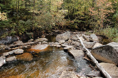 Adirondack stream, rocky boulders Royalty Free Stock Photography