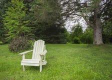 Adirondack-Stuhl im Wald Stockfoto