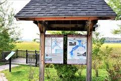 Adirondack  tupper lake wetland ecosystem stand Royalty Free Stock Photography