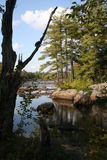 Adirondacks, Flusssteine an See Durant-Vertikale Lizenzfreies Stockfoto