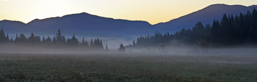 Adirondacks Foggy Pre-dawn Panorama Royalty Free Stock Images