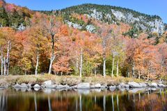 Adirondacks-Herbstlaub, New York Stockbilder