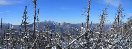 Adirondacks-hohe Spitzen-große Strecke Lizenzfreie Stockbilder