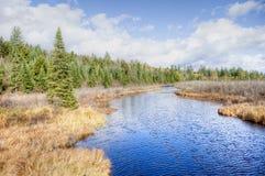 Adirondacks. Marsh in Adirondacks, NY in fall Royalty Free Stock Image