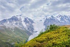 Adishi-Gletscher, Georgia Lizenzfreie Stockbilder
