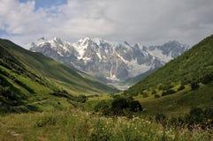 Adishi Gletscher mit Wiese Lizenzfreie Stockbilder