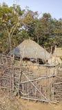 Adivasihuis in wildernis stock foto