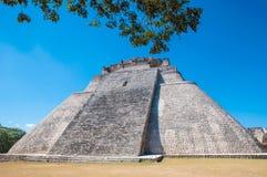 Adivino-Pyramid på Uxmal på den Yucatan halvön Royaltyfri Fotografi