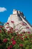 Adivino-Pyramide chez Uxmal sur la péninsule du Yucatan Image stock