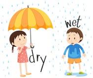 Adjetivo opuesto seco y mojado stock de ilustración