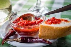 Adjika gastronomico della salsa piccante con peperoncino sul piatto Immagini Stock Libere da Diritti
