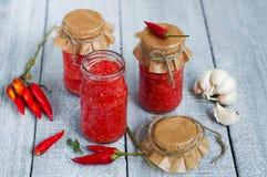 Adjika, red tomato sauce Royalty Free Stock Photos