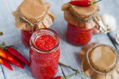 Adjika, rote Tomatensauce Lizenzfreies Stockbild