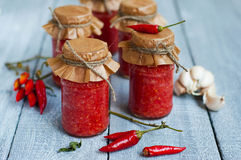 Adjika, salsa al pomodoro rossa fotografia stock