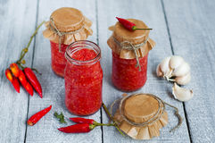 Adjika, salsa al pomodoro rossa fotografie stock libere da diritti