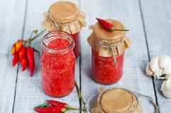 Adjika, salsa al pomodoro rossa con pepe fotografia stock libera da diritti