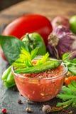Adjika - selbst gemachte Soße von frischen Tomaten, rot Lizenzfreie Stockfotografie