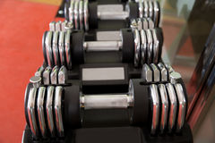 Adjustable weight dumbbells in a row with selective focus Royalty Free Stock Photo