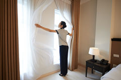 Adjusting curtains. Hotel manager adjusting curtains in the room Stock Image