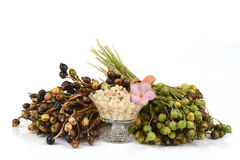Adlay, Adlay millet, Job's tears, Millet (Coix lachryma-jobi. L.).boil. Stock Photos