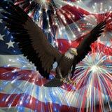 Adler über Feuerwerken und USA-Markierungsfahne Lizenzfreies Stockfoto