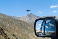 Adler auf dem Gebirgspass im Auto mit Rückseite treffend, konkurrieren Sie Lizenzfreies Stockfoto