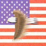 Adler bereiten Papierfertigkeit mit Amerika-Markierungsfahne auf Lizenzfreie Stockfotos