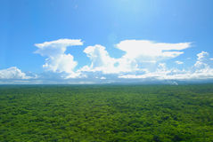 Adler cloudscape Stockfoto