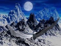 Adler in der Nacht Stockfoto