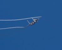 Adler des Schlag-F15 Lizenzfreie Stockfotos