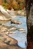 Adler-Fluss Lizenzfreie Stockbilder