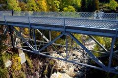 Adler-Fluss-Fälle Lizenzfreie Stockbilder