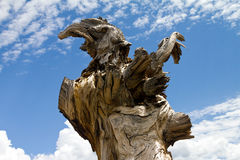 Adler geformter verdrehter alter Baum-Stumpf Stockfotografie