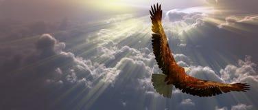 Adler im Flug über den Wolken