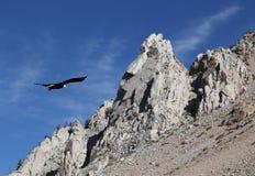 Adler mit felsigen Spitzen Stockfotos