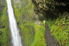 Adler-Nebenfluss-Spur in Oregon Lizenzfreie Stockfotografie