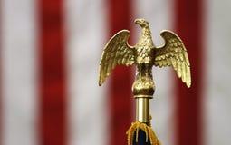 Adler oben auf amerikanische Flagge Lizenzfreies Stockfoto