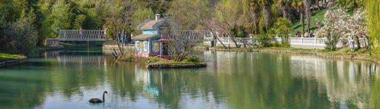 ADLER, RÚSSIA - 17 de março de 2018: Lagoa em culturas do sul do parque Imagens de Stock Royalty Free