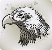 Adler. Vektorabbildung. Stockfoto
