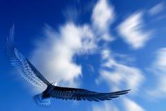 Adlerflugwesen Stockfotos