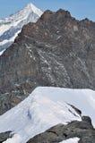 Adlerhorn Stockbilder