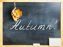 A administração da escola no outono Imagens de Stock Royalty Free