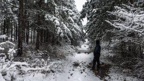 Admirando a cena do inverno Foto de Stock